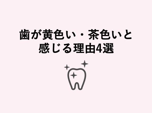歯が黄色い・茶色いと感じる理由まとめ